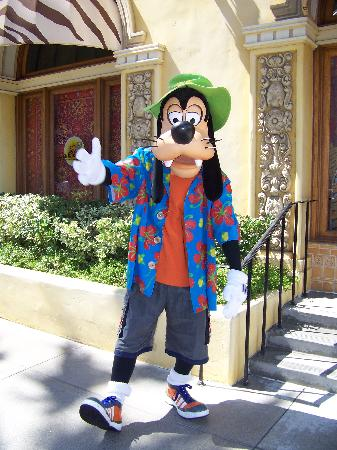 Goofy Disney S California Adventure Picture Of