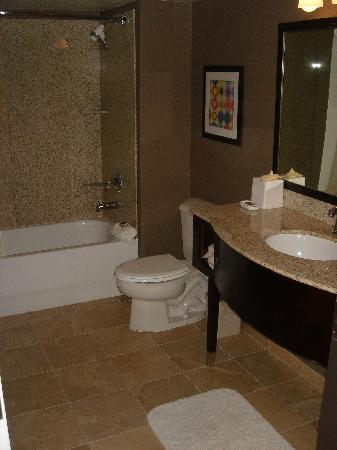 1 BR Suite - Bathroom from main room