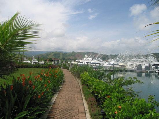 Herradura, Costa Rica: Marina