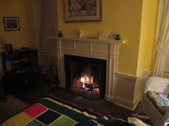 Hickory Ridge House Bed & Breakfast Inn: our fireplace