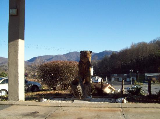 Waynesville, NC: Great View