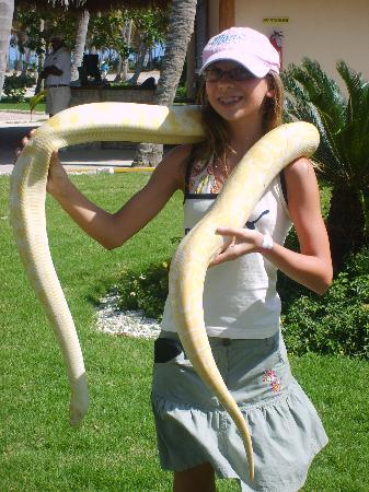 Hotel Riu Naiboa: parc animalier
