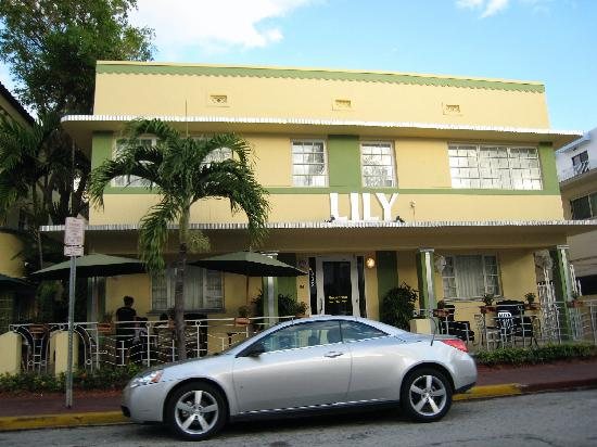 Lily Leon Hotel : Hotel Exterior