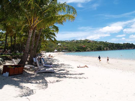 Hamilton Island Australia Catseye Beach