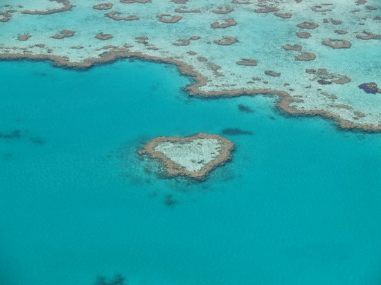 Isola di Hamilton, Australia: Heart Shaped Reef