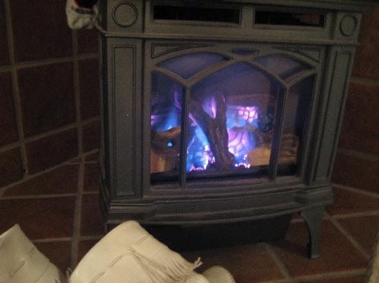 Donner Lake Inn Bed and Breakfast: Gas fire heater