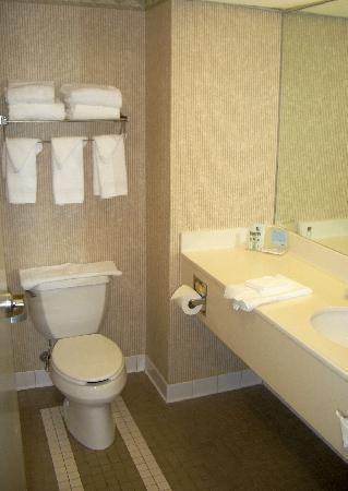هامبتون إن كلاركس سوميت: Bathroom