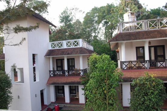 Hotel Treetop: treetop rooms