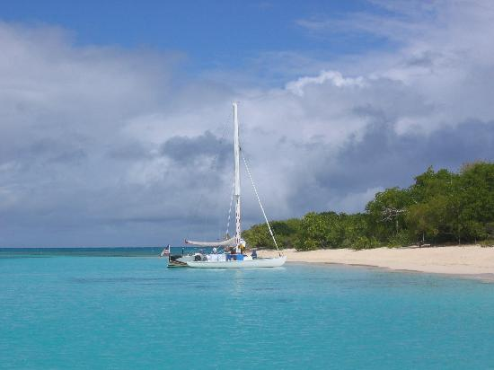 Hotel on the Cay: Buck Island Beach - a must 1/2 trip by motorboat