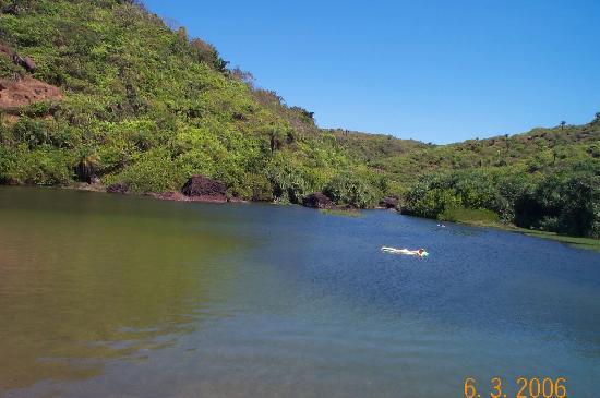 The lagoon at arambol