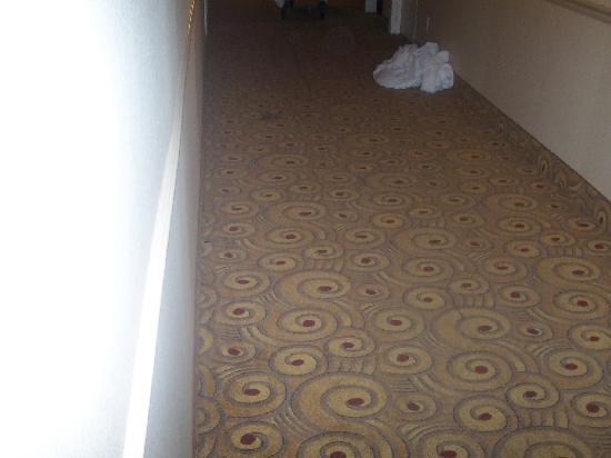 Quality Inn Stroudsburg: Hallway dirty rug