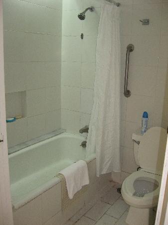 Holiday Inn Resort Ixtapa : salle de bain dû à des rénos, bain rouillé sur les côtés,joints de céramique dégueulasses )