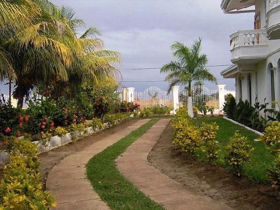 Dolphin Guest House: look garden