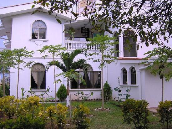 Dolphin Guest House: look garden 2