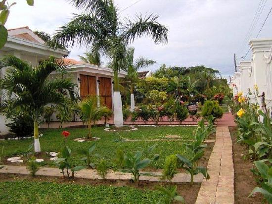 Dolphin Guest House: garden 3