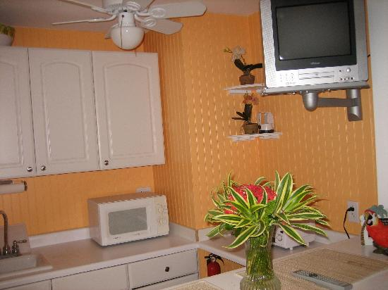 Pineapple Village Villas at Pineapple Village: The mini-kitchen & TV in Coral Suite