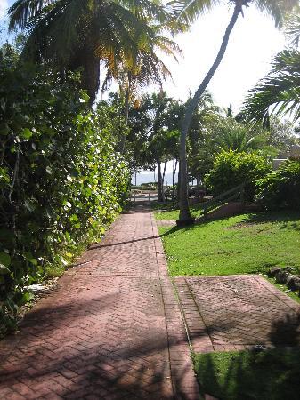 Pineapple Village Villas at Pineapple Village: The walkways at Pineapple Village