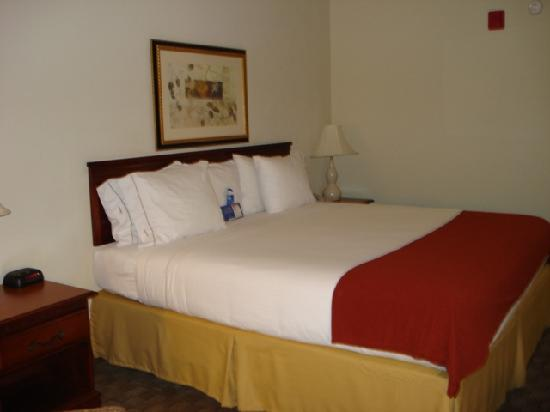 Holiday Inn Express Hotel & Suites Bessemer: Comfy king bed