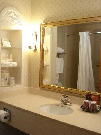 Holiday Inn Express Hotel & Suites Bessemer: Nice shower