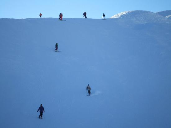 The Excelsior: Skiers