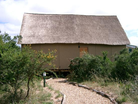 Amakhala Game Reserve: Reed Valley Bush Lodge