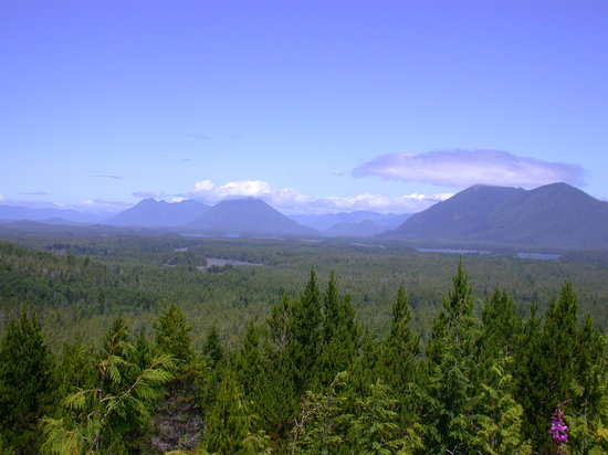 Tofino, Kanada: Smaller yet still magnificent mountains