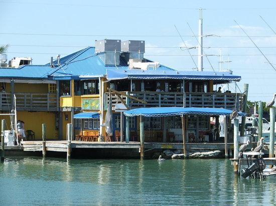 Wahoo S Bar And Grill Islamorada Restaurant Reviews