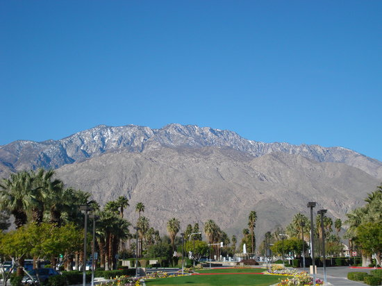 Palm Springs, Californie : at the airport