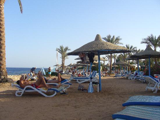 Veraclub Queen Sharm : spiaggia