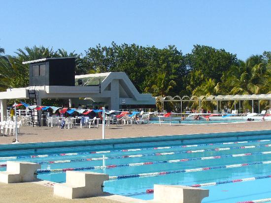 Laguna Mar: pool view... pool bar
