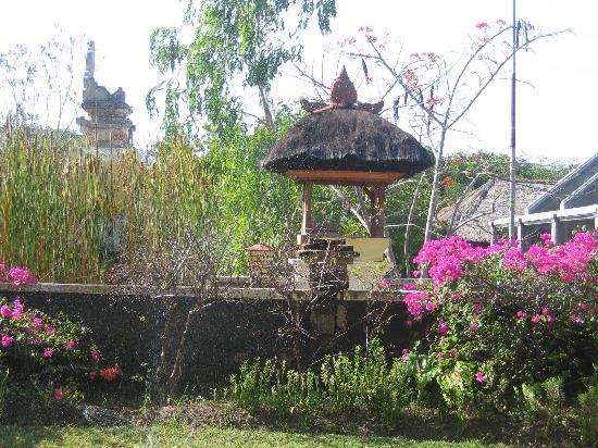 Mimpi Resort Menjangan: le jardin