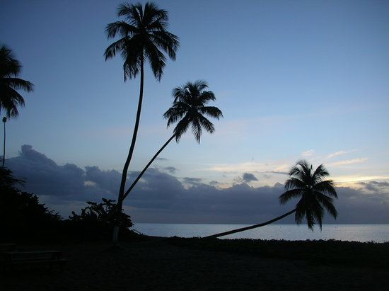 Nevis: Sunset at Cocos