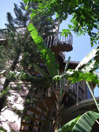 The Lily Pond House Hotel: The lush life