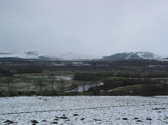 Struie Hill Picture Of Scottish Highlands Scotland