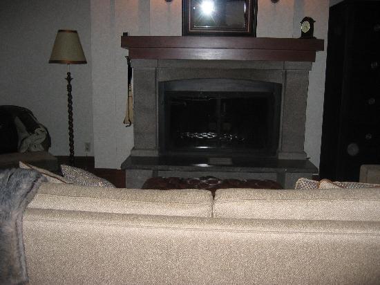 Hotel Quintessence : Wood-burning fireplace