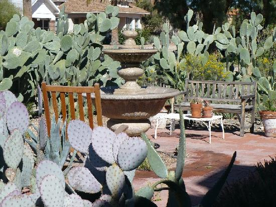 Catalina Park Inn Bed and Breakfast: Fountain, one of several outdoor lounging spots