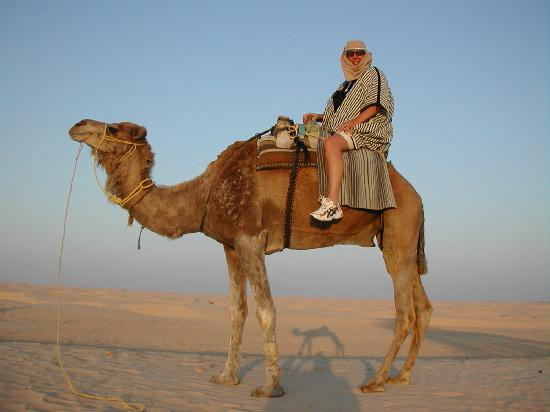 Moroccan Sahara : a must on a trip to the sahara
