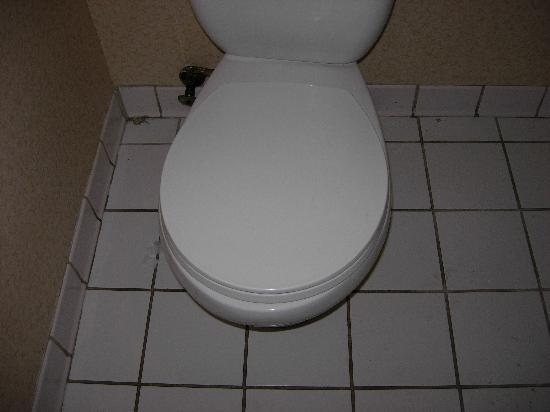 Rodeway Inn & Suites : Toilet