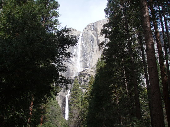 Fish Camp, Californië: Yosemite Falls