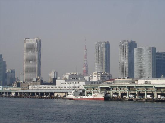 طوكيو, اليابان: Tsukiji Fish Market and Tokyo Tower