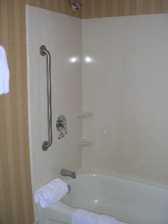 Courtyard Rocky Mount: bathroom