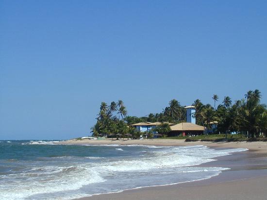 Itacimirim: beach