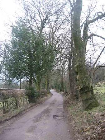 Lane leading from Underleigh House