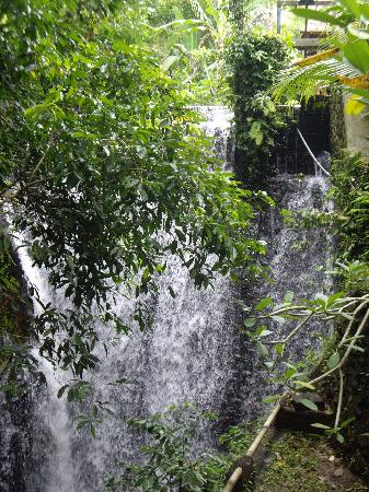 Ubud Sari Health Resort: Waterfall in the retreat