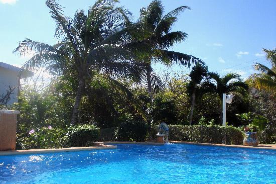 Villas Punta Sur : pool view