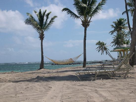 Nisbet Plantation Beach Club: The hammock we slept in one night