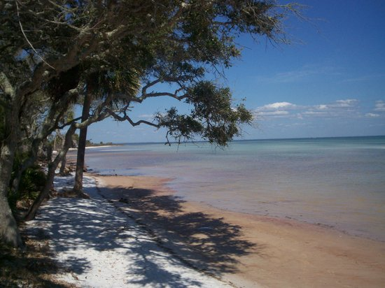 Port Saint Joe, Floryda: St. Joe Bay on the Hammock Trail