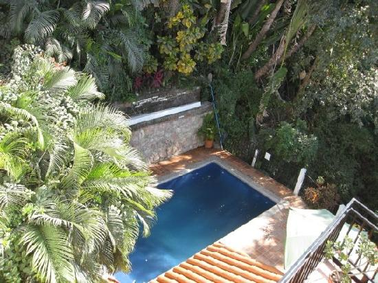 Villa Olivia: pool from upper deck