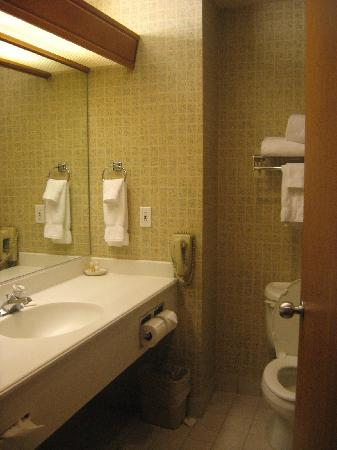 Ramada Olympia: Bathroom looking in from room