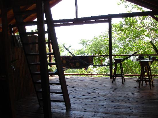 Lookout Inn Lodge: monkey house